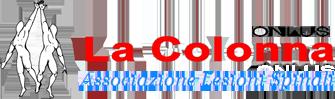 Immagine logo associazione lesioni spinali