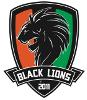 Black Lyons Venezia
